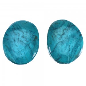Turquoise Southwest Sterling SilverJewelry Post Earrings BX116832